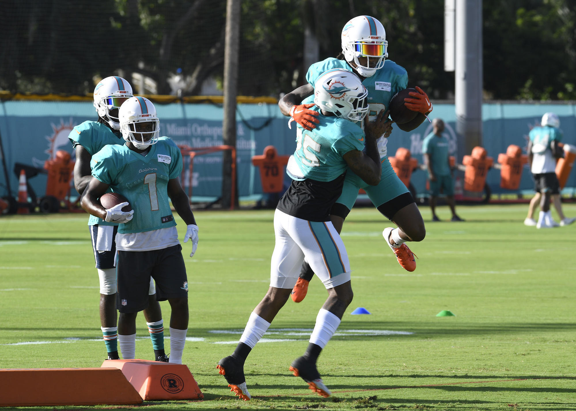 Fl-sp-dolphins-stock-report-20180812