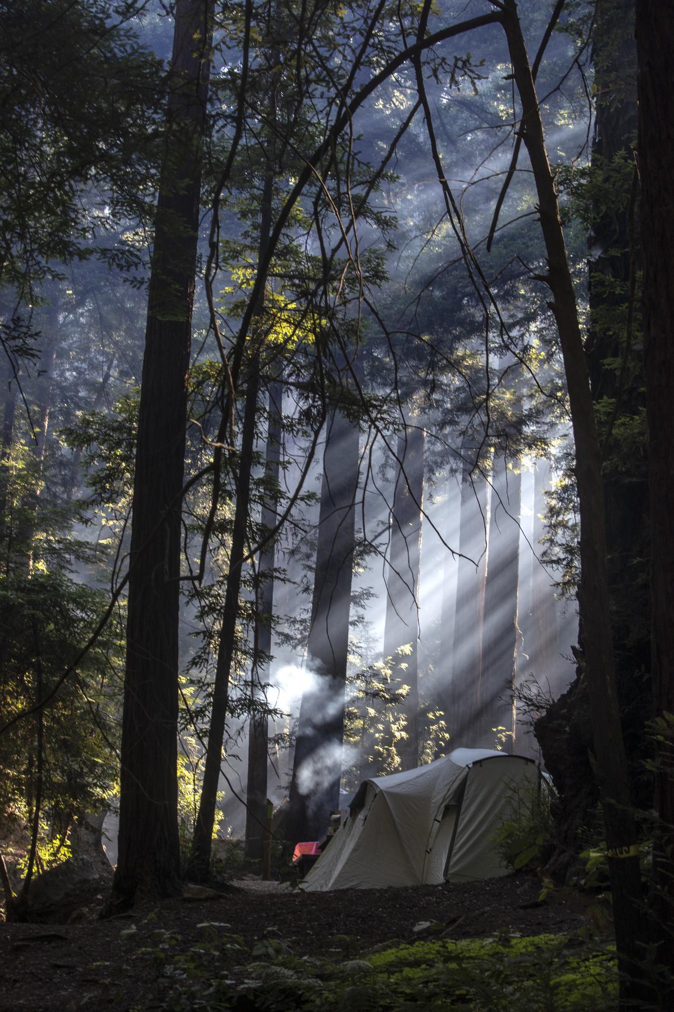 Ventana campground in Big Sur