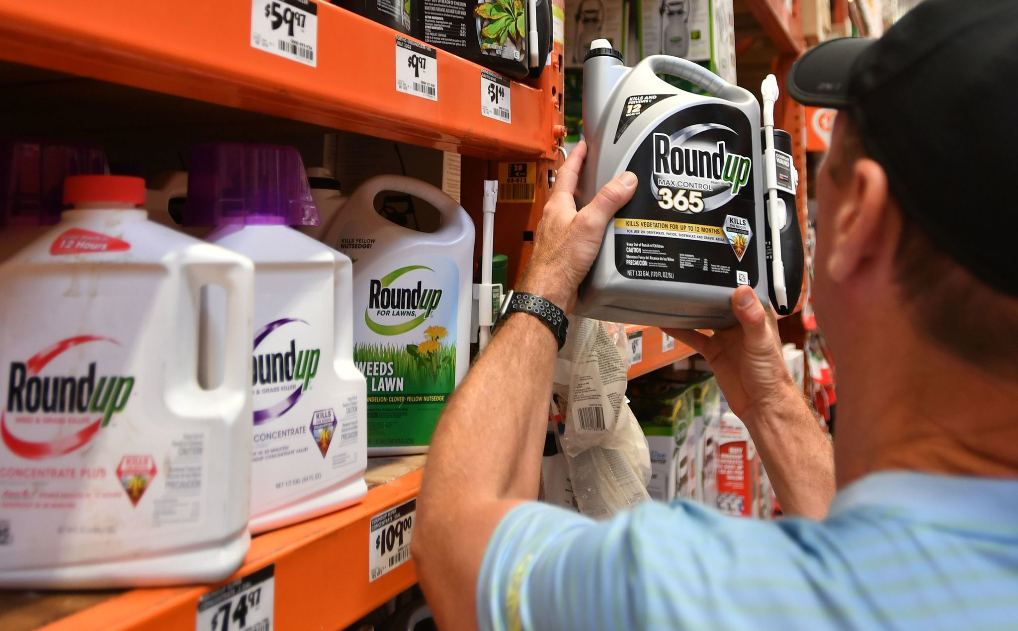 Report: Oatmeal, breakfast foods contain potentially unsafe amounts of weed killer