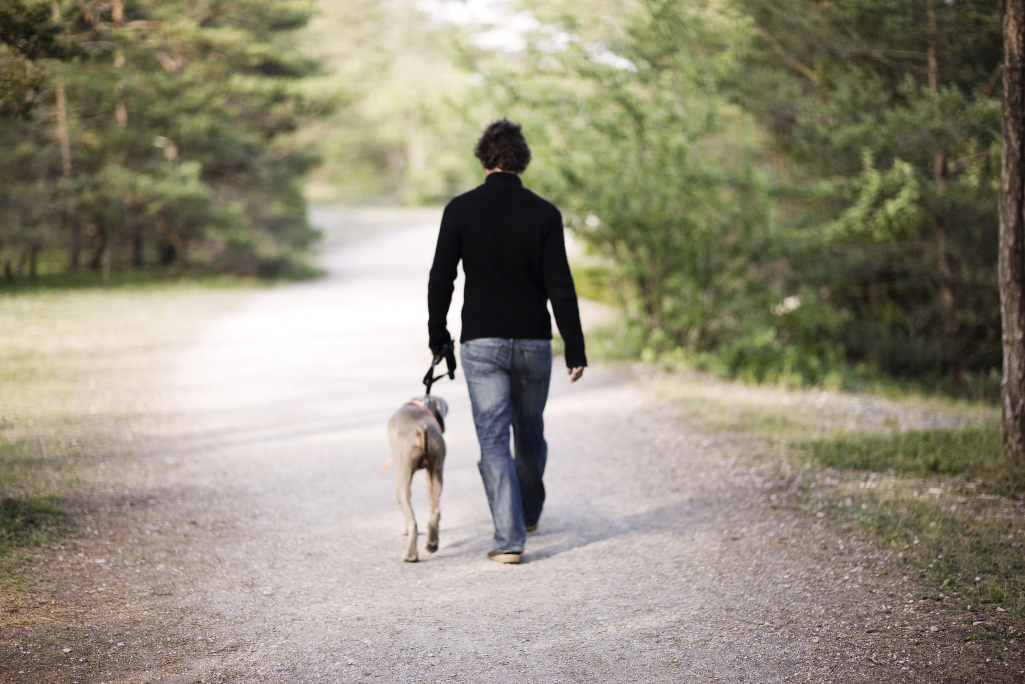 When it comes to walking, more is better