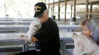 Dog training service helps veterans suffering from combat disorders