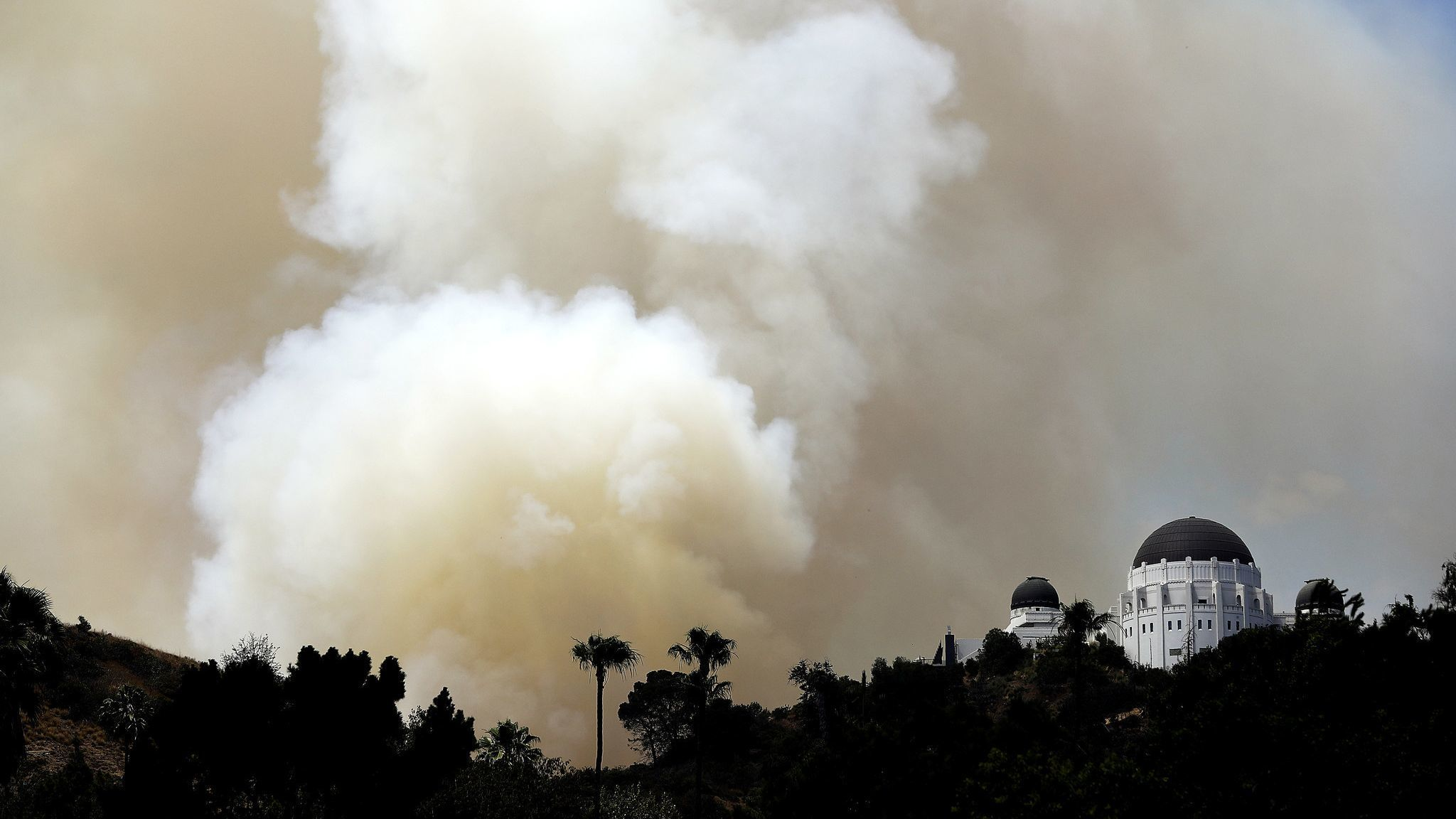 Firefighters tackle brush fire in Griffith Park