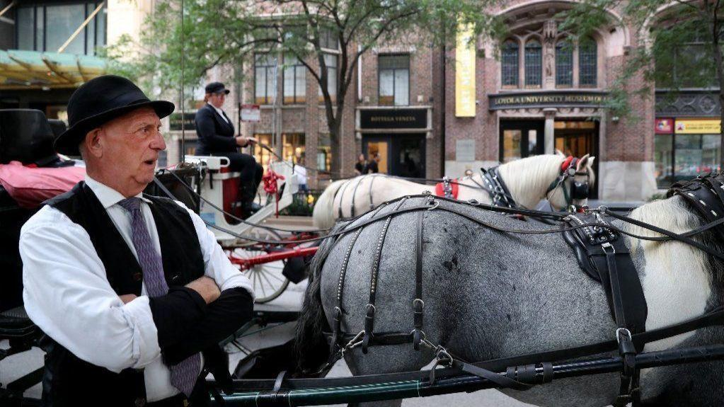 Horse-drawn carriage owners sue animal welfare activists