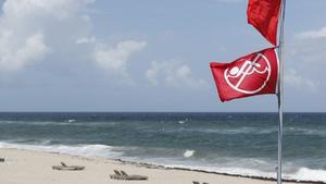 Is red tide natural, or is it a man-made crisis?
