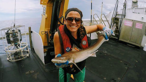 Teacher at sea: Crown Point teacher gets trip of a lifetime on science voyage