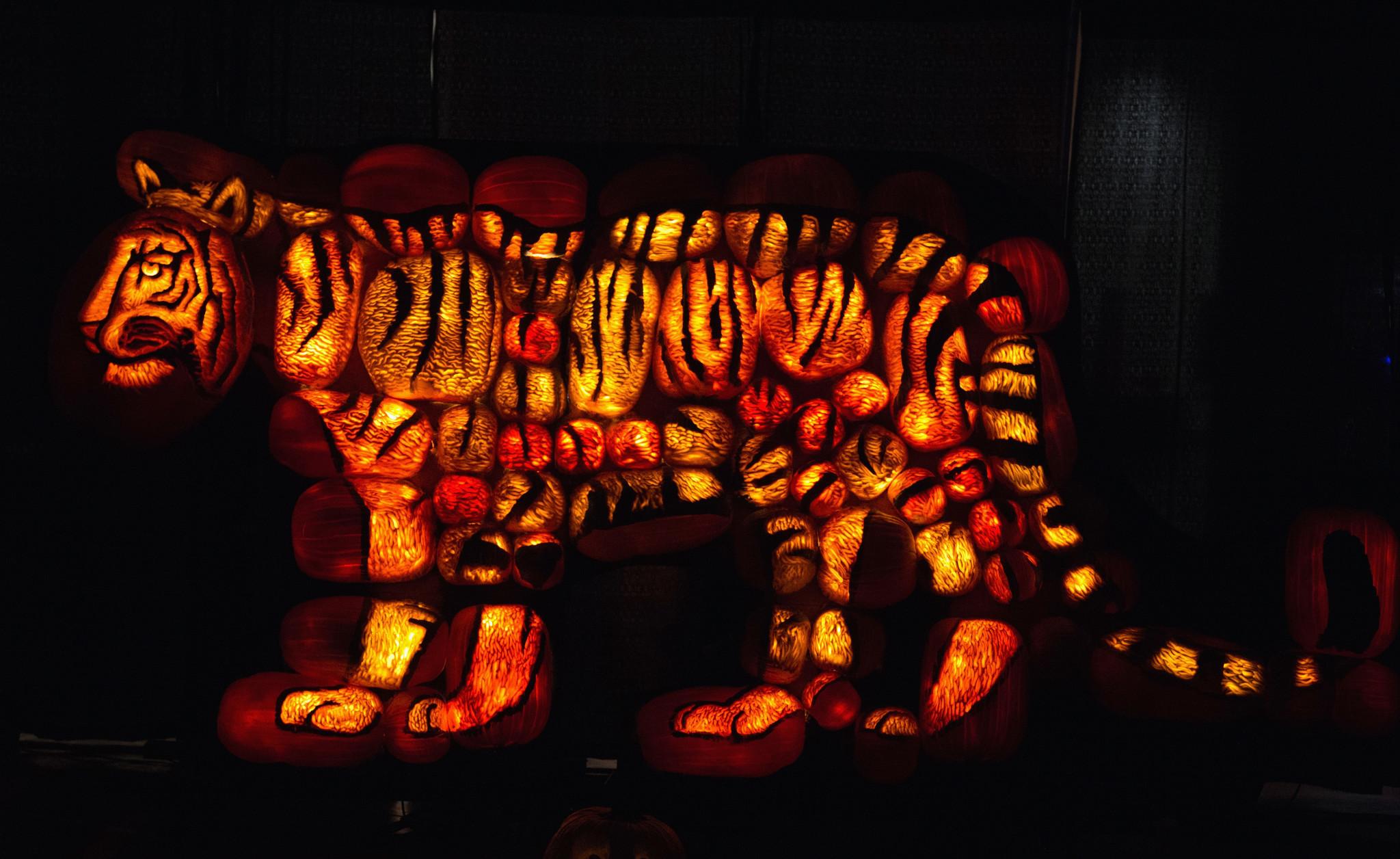 25 Insane Jack O Lanterns Chicago Tribune
