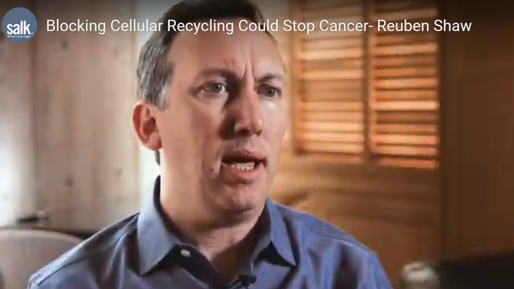 Blocking Cellular Recycling Could Stop Cancer- Reuben Shaw