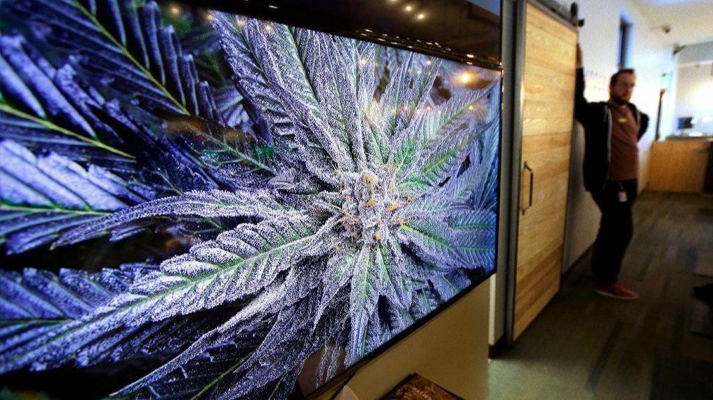 Marijuana to go on sale in Massachusetts Tuesday