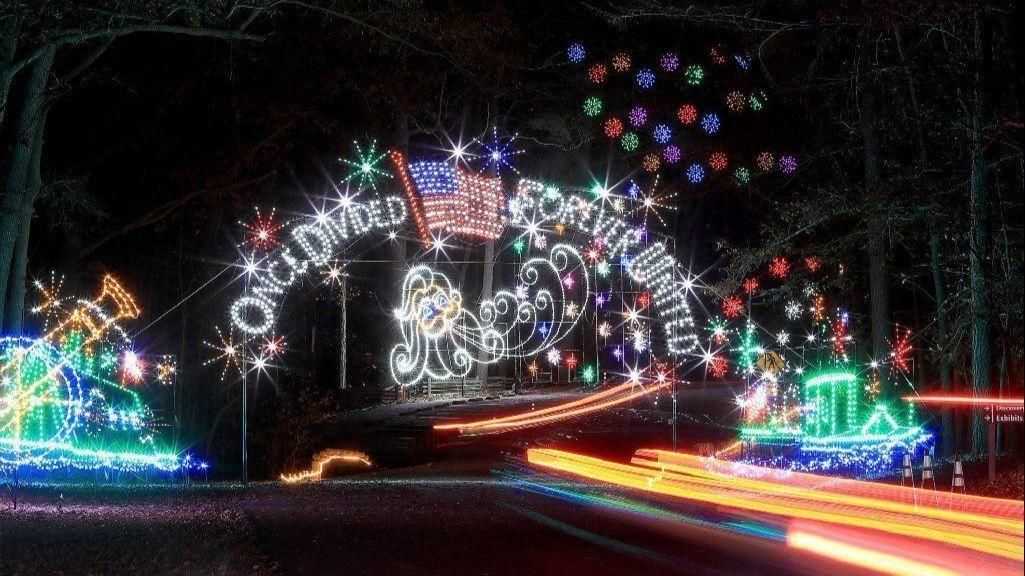 The Daily Press is looking for the best Christmas lights in town ...
