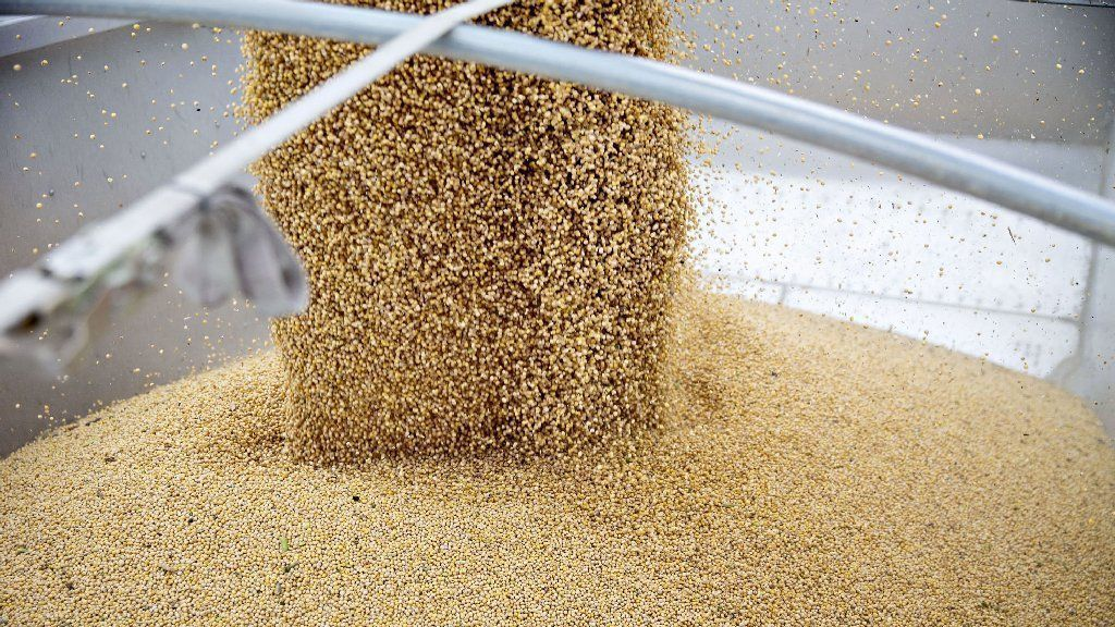 China's buying U.S. soy again, but so far not enough to dent mountain of stockpiled beans