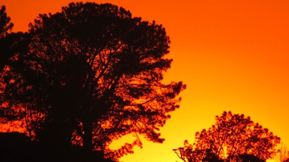 Santa Ana winds to snap through San Diego County Monday to Wednesday