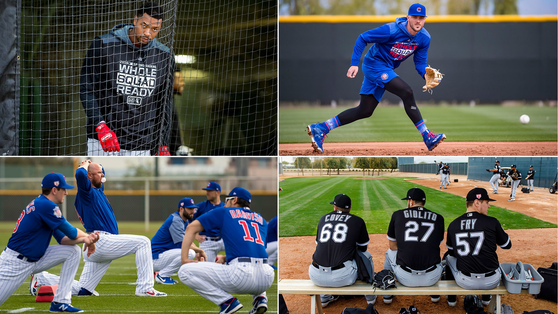 Welcome back, baseball. Here are the best photos of the Cubs and White Sox at spring training