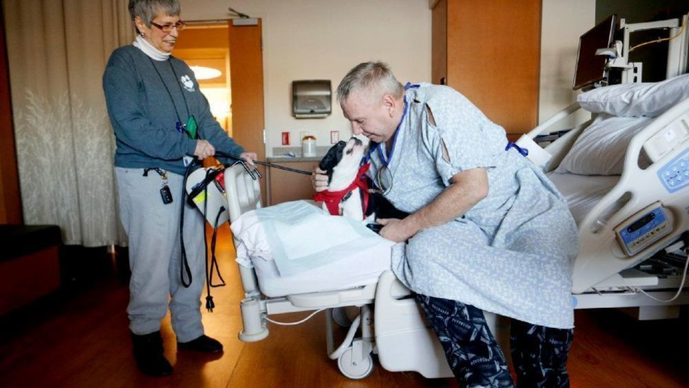 Pet therapy added to add support for patients, staff at Munster health center