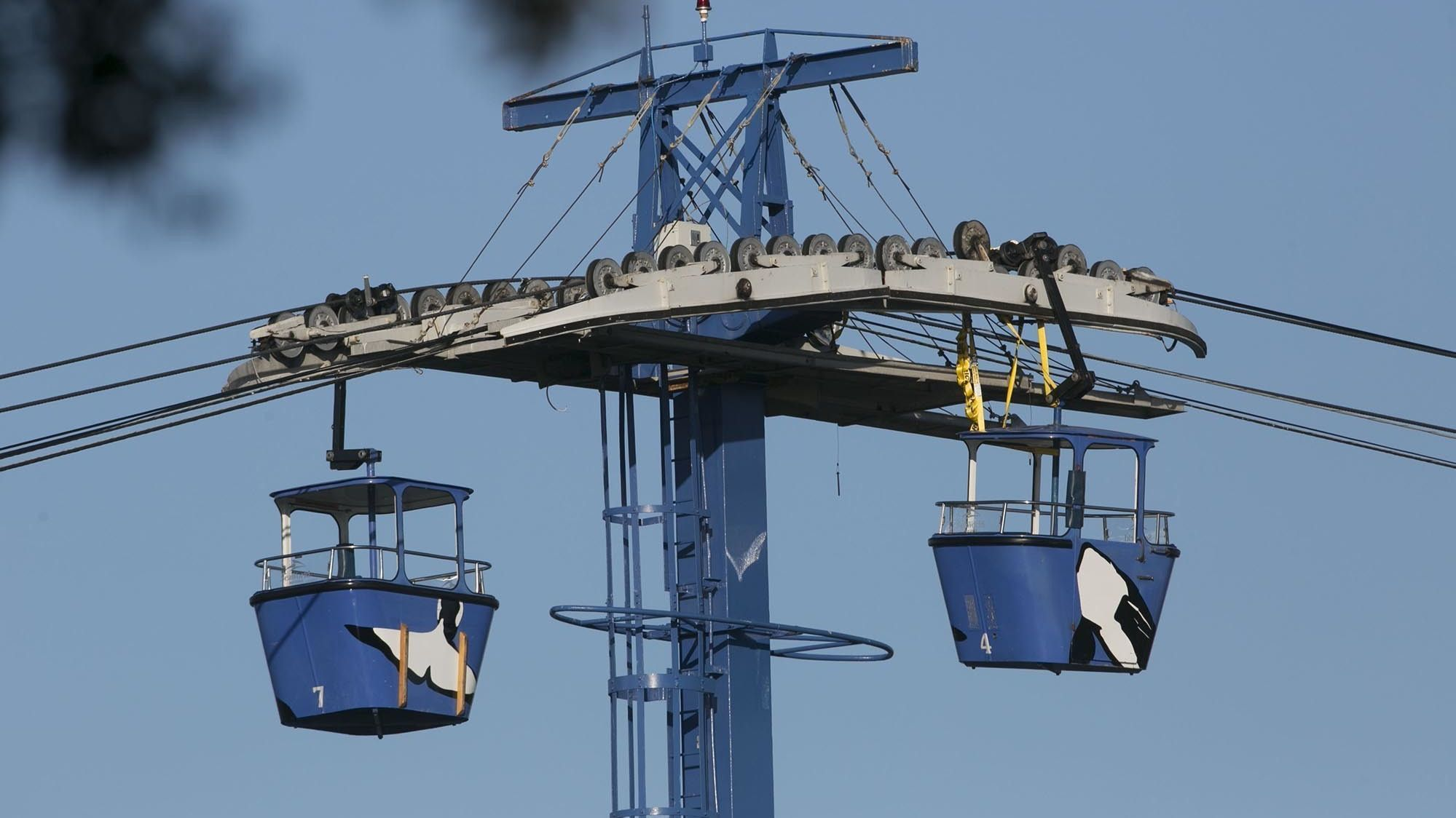 SeaWorld rescue of stranded Skyride passengers was first evacuation since 1967 opening