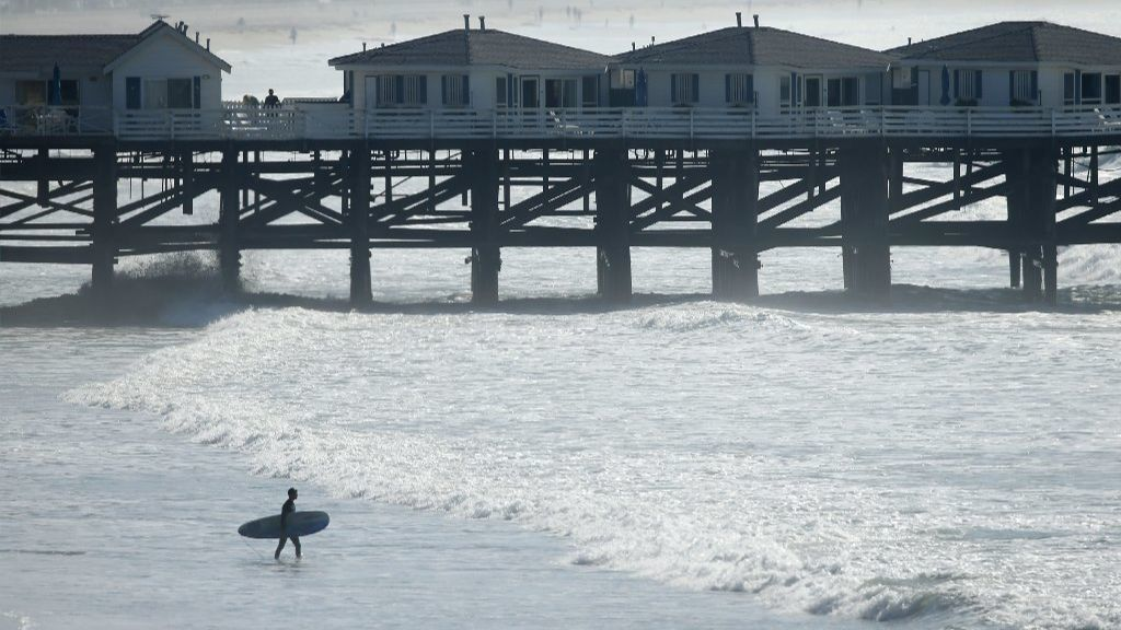 Stingrays are 'out in full force' at San Diego beaches. Here's how to avoid and treat stings.