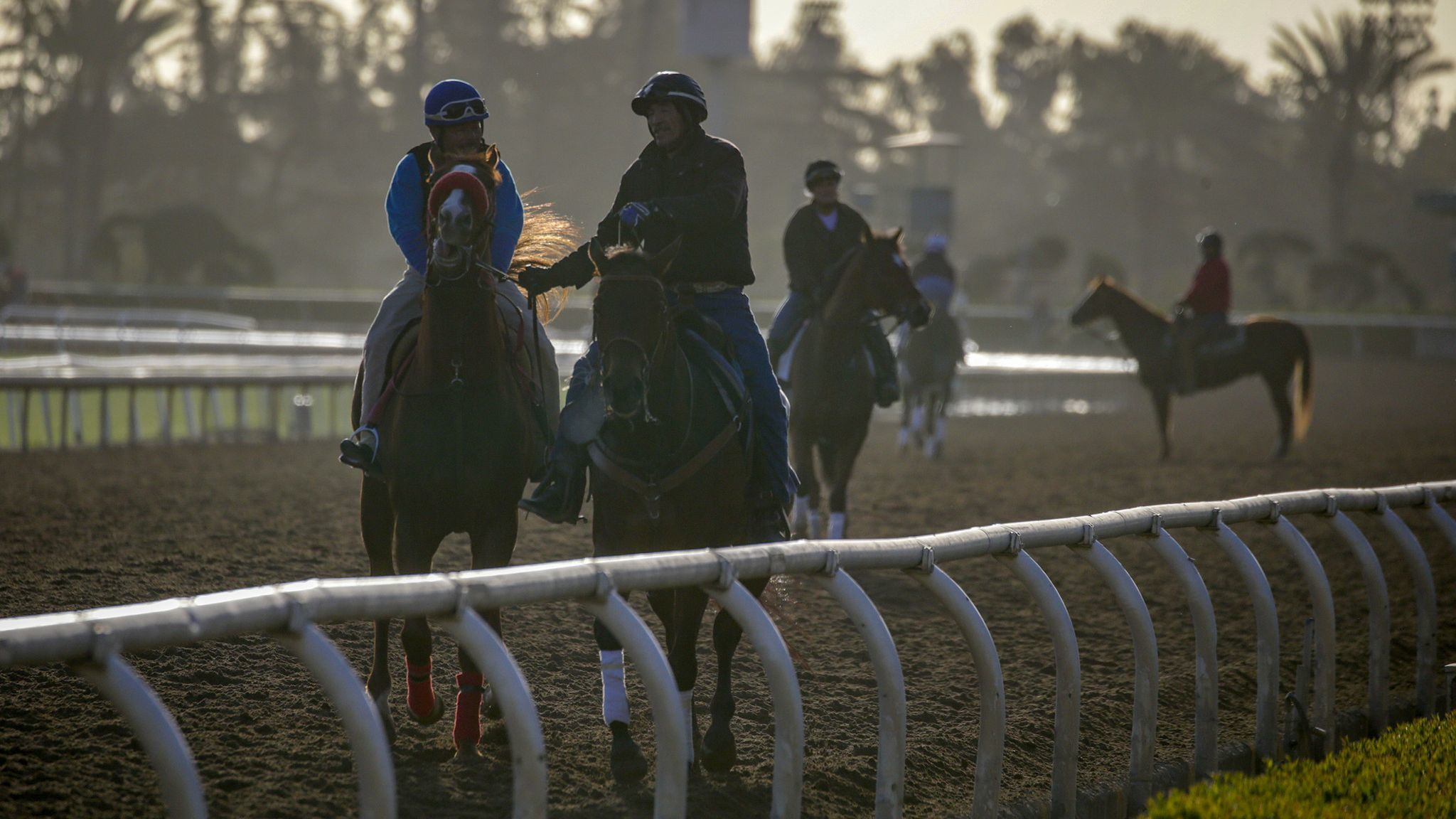 Racing experts discuss the future of the sport after rash of horse deaths at Santa Anita