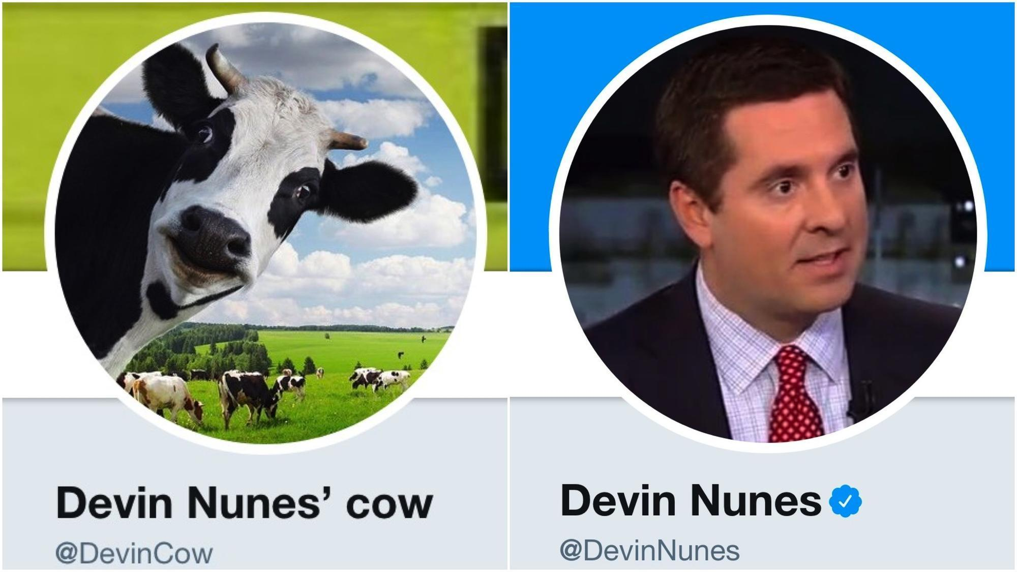 Devin Nunes sues a sassy cow on Twitter, and she gains a herd of followers