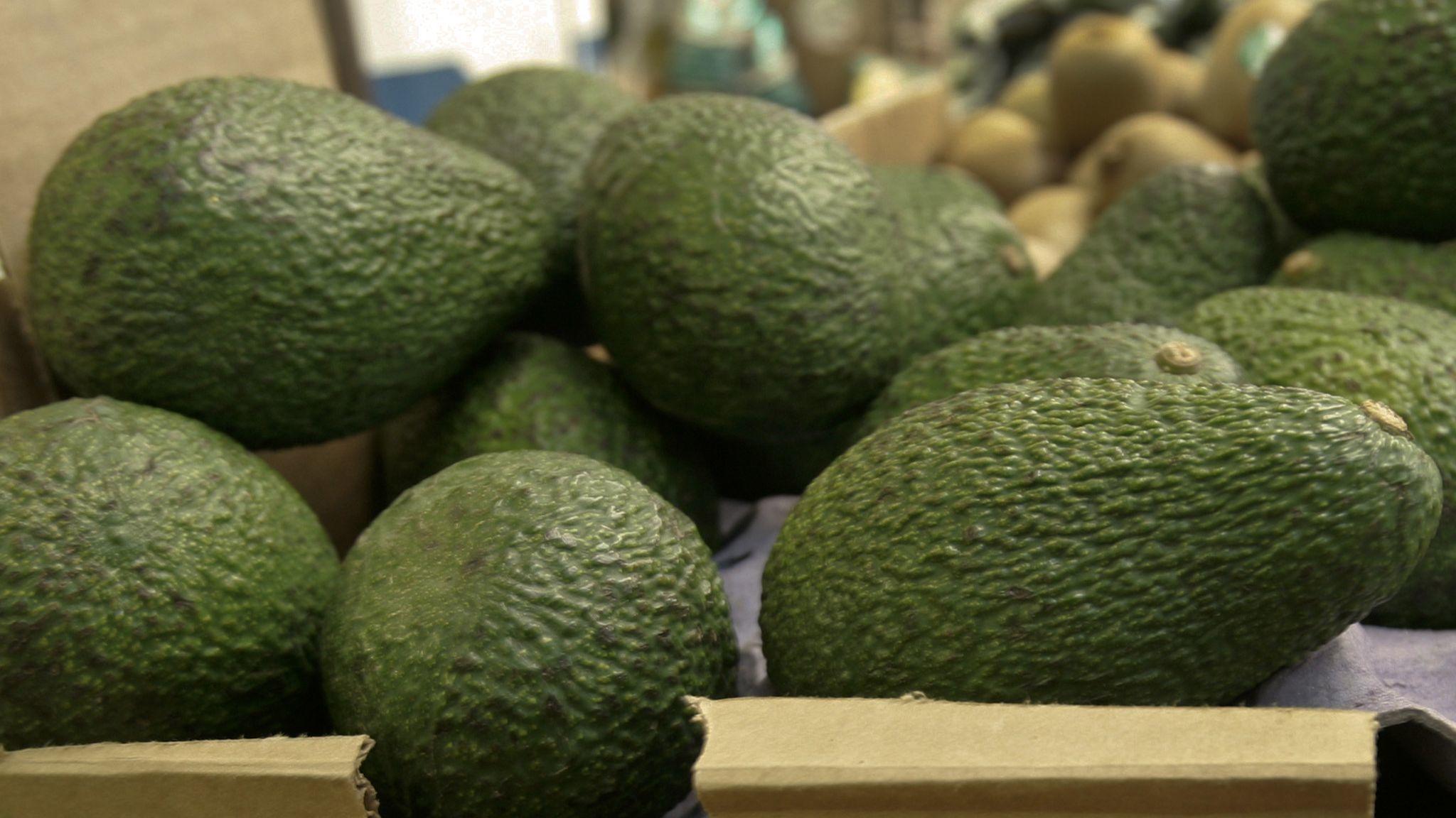 Grower recalls avocados shipped to Florida, elsewhere, over listeria concerns