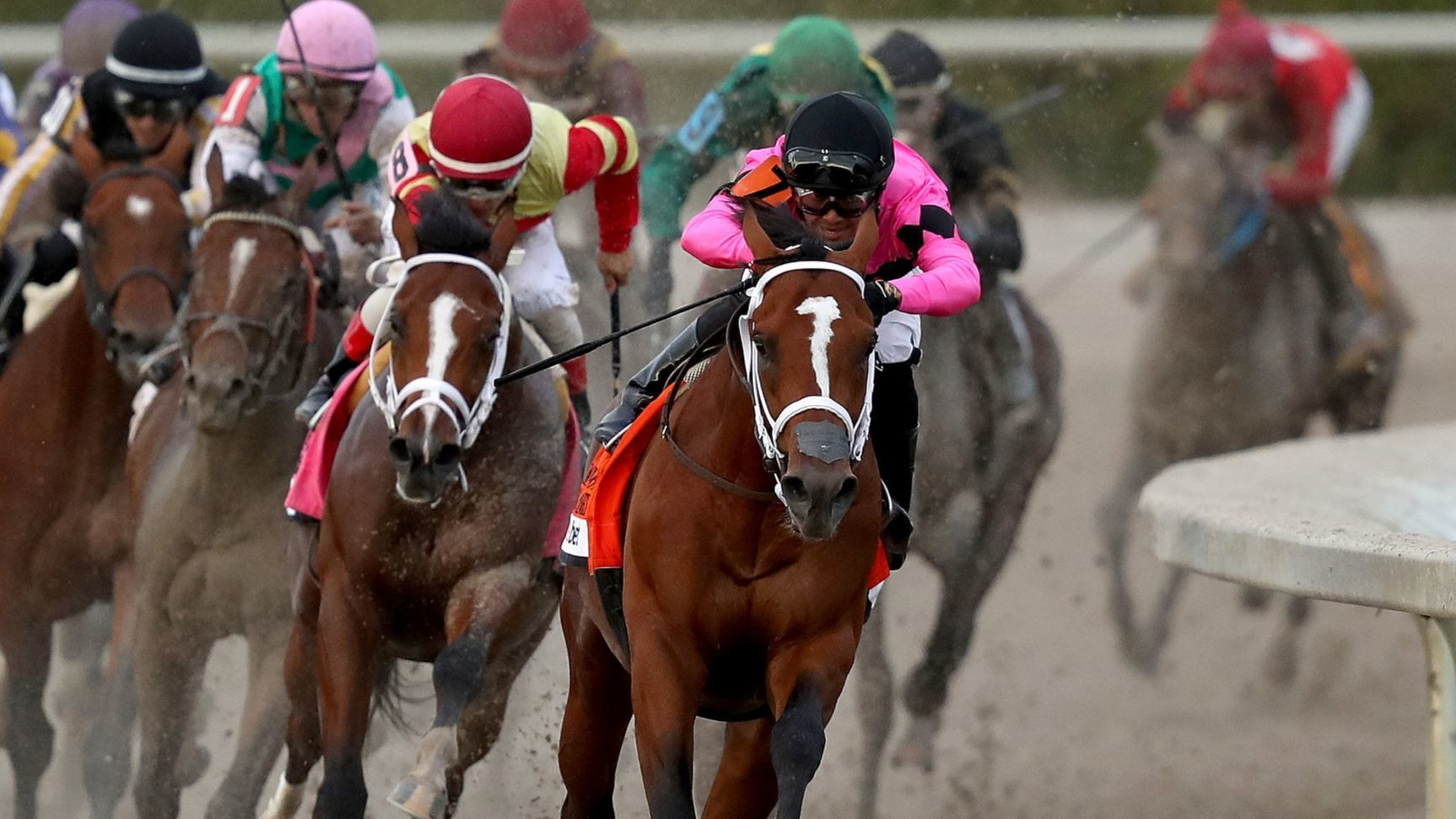 Maximum Security wins the Florida Derby, muddling the Run for the Rose