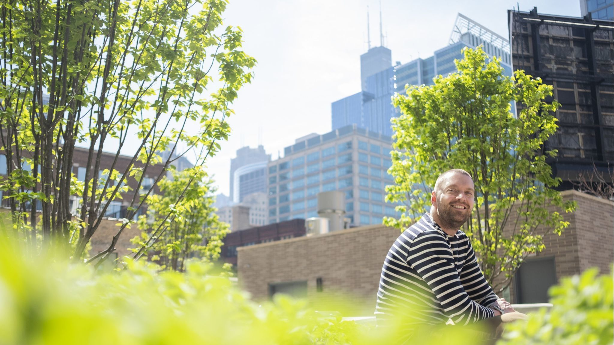 Apartment buildings in Chicago's urban jungle are going green, from produce gardens to rooftop trees
