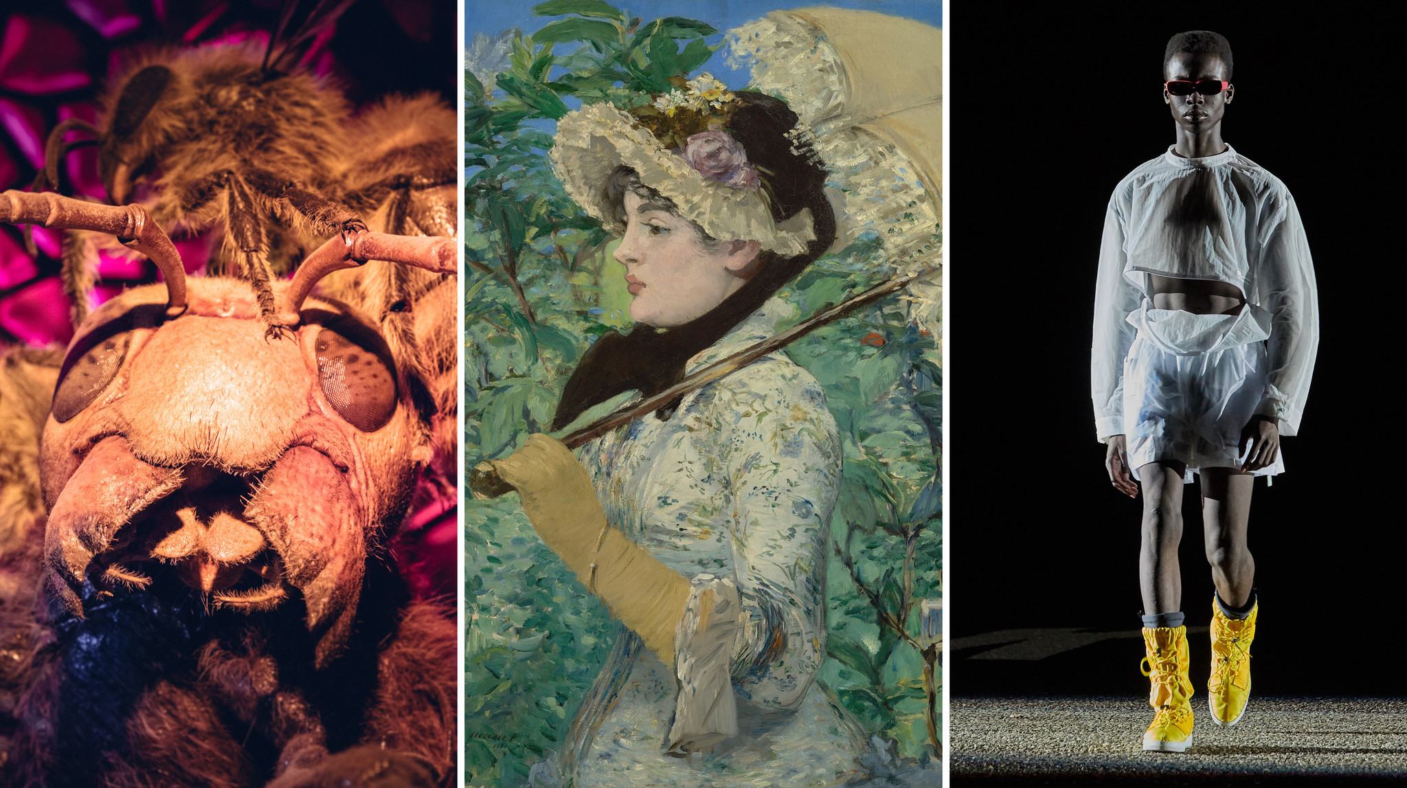 Here's the best of what's new at Chicago-area museums this summer