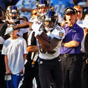 John Harbaugh, Torrey Smith