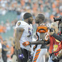 Ray Lewis, Chad Ochocinco
