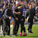 John Harbaugh, Ray Rice