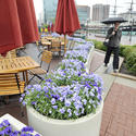 Outdoor seating at Harborplace