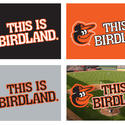 This is Birdland