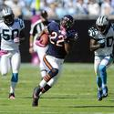 Forte vs. Panthers