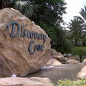 SeaWorld's Discovery Cove in Orlando