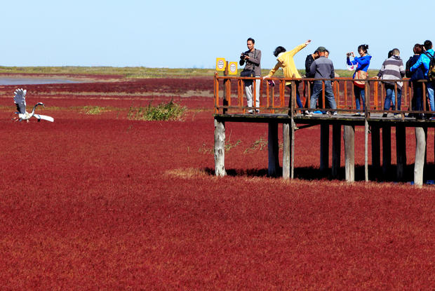 Visitors take in Red Beach from a wooden walkway.