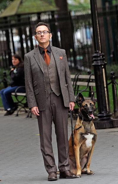 "Michael Emerson with Boker the dog on location in Manhattan for ""Person of Interest."""