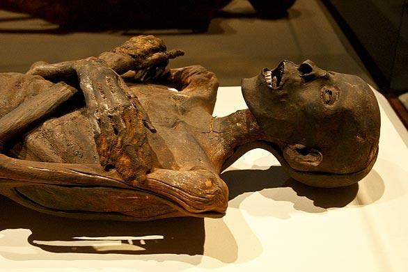 An Egyptian male mummy. Radiocarbon dating shows he is from about 330 BC, and a CT scan suggests he was 35 to 40 years old.