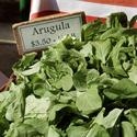 Arugula -- greens with a bite.