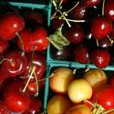 Tartarian cherries, left, Brooks cherries, top right, and Rainier cherries, bottom right.