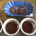 Cupping Step 2: Grind the beans