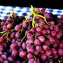 Ruby seedless grapes