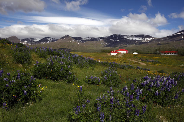 A view in east Iceland.