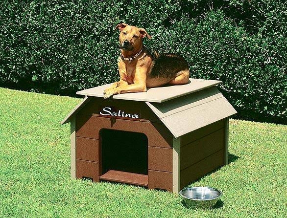 "There's a house style for every dog -- and every dog lover. Canine dwellings on the market today illustrate the far ranging styles: For the eco-dog, there's the the Greenwood Luxury Palace. It's made of recycled plastic baby bottles and comes in various colors. It's $850 for the large model, $780 for the small. (800) 448-4409 or (714) 983 0050 or  <a href=""http://www.eagleoneproducts.com"">www.eagleoneproducts.com</a>."