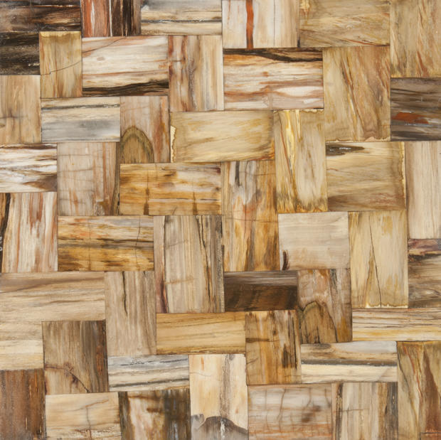 "Another spin on wood tile: Ann Sacks' new Petrified Wood collection, touted as exotic choices durable enough to use in wet areas. The wood-turned-stone comes in a range of <a href=""http://www.annsacks.com/onlinecatalog/program.jsp?cat=268004&coll=268504&prg=3124704"">colors and formats</a>."
