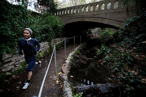 An early morning jogger runs on the Fern Dell trail in Griffith Park. The once-exotic sanctuary is in deep decline, a victim of neglect, budget cuts and rampant vandalism.