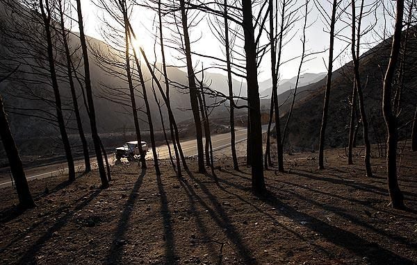 A landscape charred by the Station fire lines both sides of  Big Tujunga Canyon Road in the Angeles National Forest.