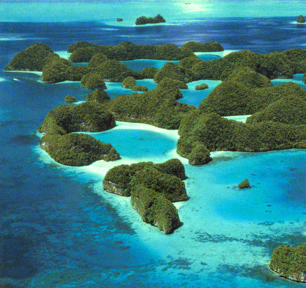 The Rock Islands Southern Lagoon, named a UNESCO World Heritage site in 2012, encompasses coral reefs, caves, 445 limestone islands and 52 marine lakes. This varied landscape has given rise to abundant marine diversity that includes many endemic species.