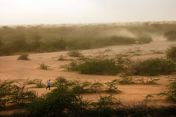 The landscape around the three refugee camps that make up the Dadaab complex in eastern Kenya is unforgiving. Refugees from Somalia sometimes walk for weeks to reach the site, arriving hungry, thirsty and exhausted. Four decades ago, mankind seemed to be gaining ground on its longtime nemesis, hunger. But as Earth's population continues to boom, the suffering persists on a massive scale.