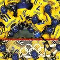 Day 11: Swedish team' huddle
