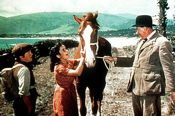 "Elizabeth Taylor and Mickey Rooney starred in ""National Velvet"" in 1944."