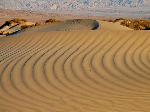 The Mesquite Dunes are near the small resort area of Stovepipe Wells on the eastern side of the park. The wind shapes the sand into a variety of curves, lines and shadows that just beg to be photographed.