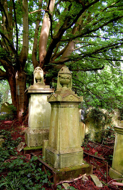 Grave markers  share space with trees and other foliage in the Highgate West Cemetery in the eponymous London suburb.